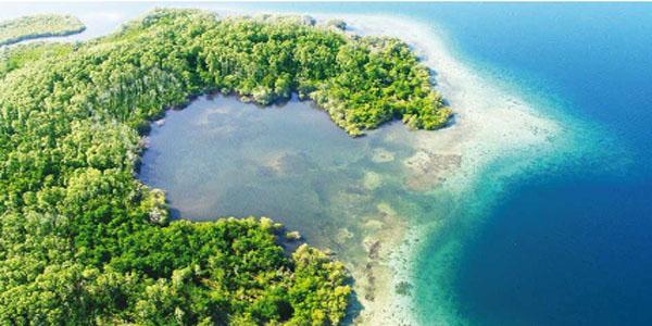Isla Bastimentos Cove