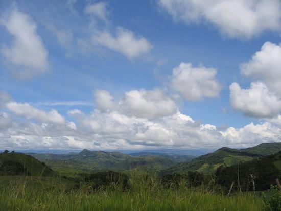 Herrer blue sky