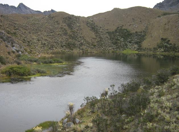 cocle laguna