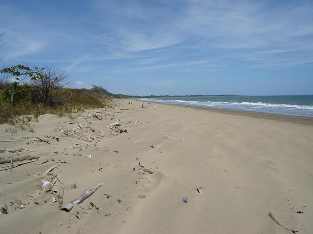Pedasi Beach