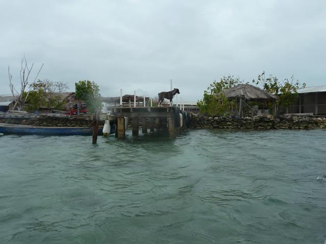 cabanas-ukuptupu-san-blas-islands-panama-port