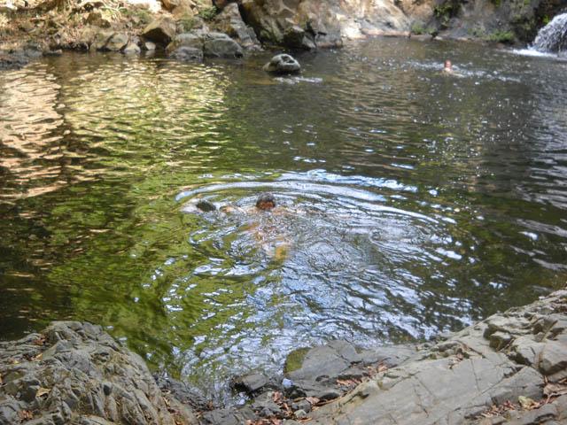 embera-village-day-tour-panama-enjoy-the-nature