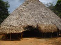 Embera Palm Bohio