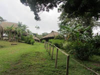 Embera Huts