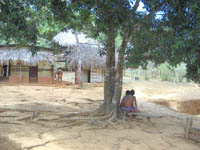 New Embera Houses