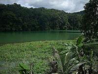 Stunning Green Landcapes