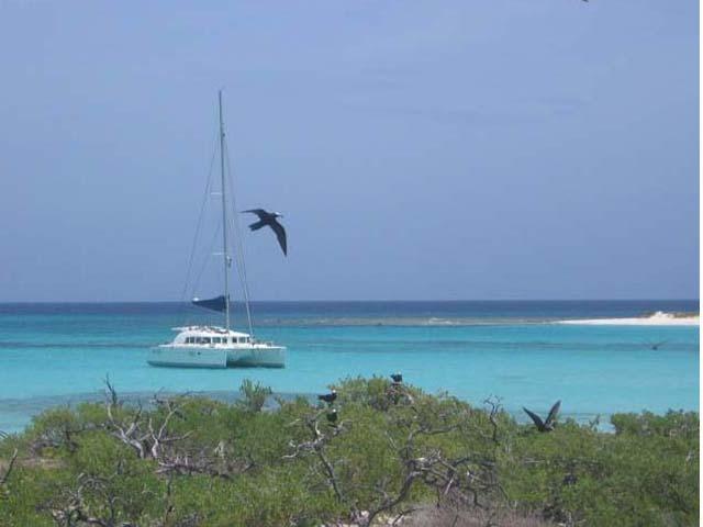 Sailing-Panama-Cartagena-San-Blas-buon-vento-eye-bird