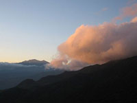 Cloud forest sunset over