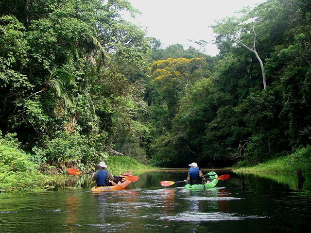 panama-Kayaking Trips-tour-kayacks5