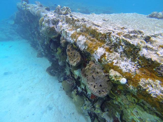 san-blas-islands-panama-camping-tour-reef