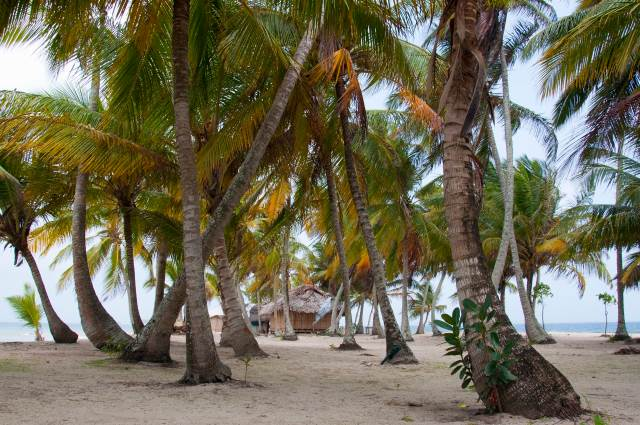 cabana-iguana-9