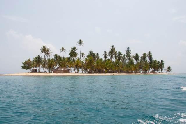 cabana-iguana